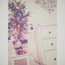 poor christmastree