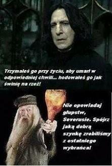 Harry Potter Cytaty Inspiracje Tablica Zuzu196 Na Zszywkapl