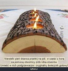 świecznik z pnia