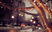 Christmas Lights . Merry Christmas. Wesołych Świąt ;***