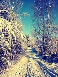 Zima, zima ^^