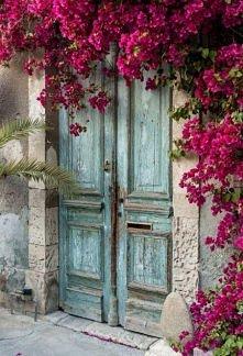 Wejście do domu. Nawet stare drzwi mogą wyglądać magicznie jeśli takie kwiaty rosną obok.