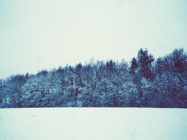 zima przyszła nareszcie!