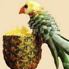 papuga z ananasa