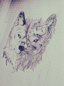 wilczek :)