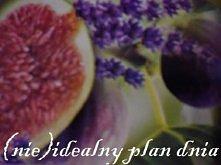 mój pomysł na organizację dnia ;) (klik w zdjęcie)