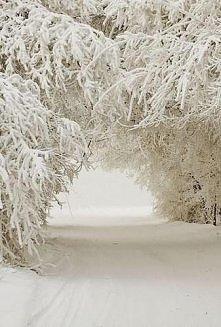 chciałabym taką zimę...