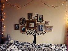 takie drzewo genealogiczne ...