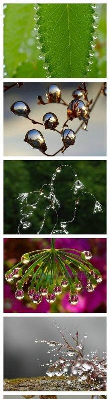 piękno kropli wody