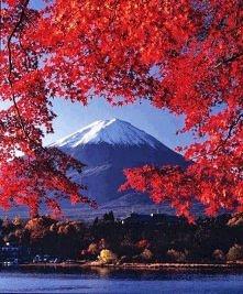 *q* piękna jesień