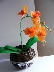 orchidea z krepiny-krok po kroku na mojej stronie-zapraszam
