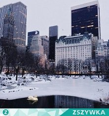 NEW YORK CITY IN THE WINTER <3