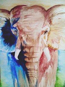 Słoń <3