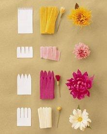 Kwiaty z bibuły prasowanej. Szablon i efekt końcowy.