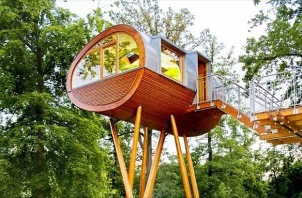 Niezwyk y dom na drzewie na niezwyk e domy - Casitas en el arbol ...
