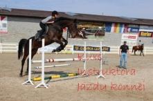Kurs Instruktora Jazdy konnej   Green Way #koń#sport