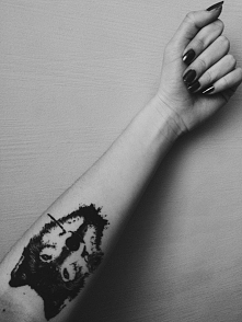 Wilk z różą *.*