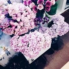Kwiaty kwiaty !!