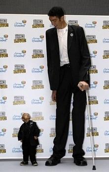 Najwyższy i najniższy człowiek świata :) -Najwyższym człowiekiem na świata Sultan Kosen pochodzi z Turcji, ma 247 cm wzrostu; ma również największe dłonie- 27,5 cm. Sultan ma 27...