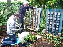 fajny pomysł na ogródek nawet zmieści się na balkonie:) i własne warzywka w mieście