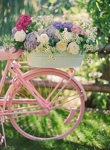 pora na rower