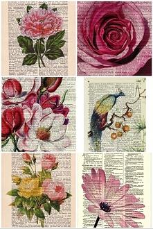 zamiast papieru użycie kartek ze starych słowników, zdeaktualizowanych encyklopedii itp