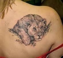 lion tattoo cat back