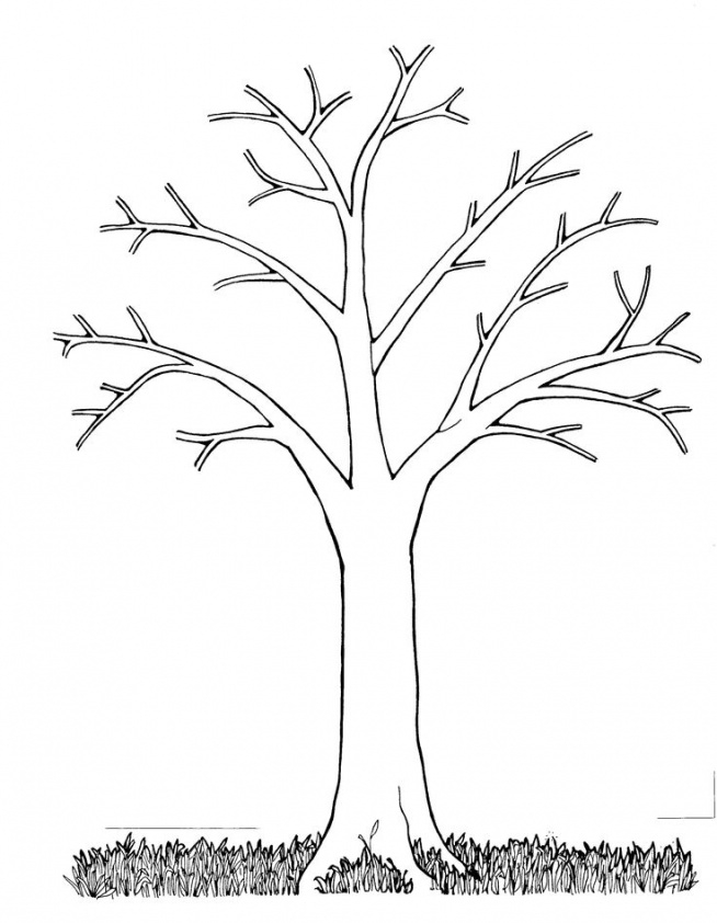 szablon drzewo na pomys u0142y