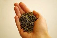 13 przepisów na kosmetyki, które zrobicie z czarnej i zielonej herbaty. Toniki, maseczki dla różnych typów cery, płukanki do włosów i inne - zapraszam na post, kliknijcie w moją...