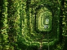 Tunnel of Love - Kleven, Uk...