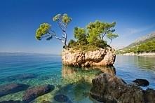 Chorwacja: wybrzeże w mieście Brela