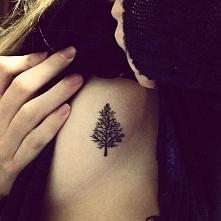 tatuaż drzewo