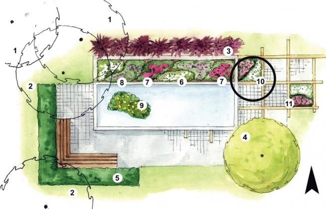 Projekt Małego Ogrodu Ze Zbiornikiem Wodnym W Prostokątnych Ram Na