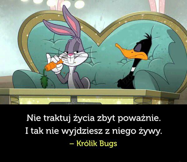 Królik Bugs Prawdę Ci Powie D Na Cytatywiersze Zszywkapl