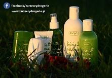 Znacie serię kosmetyków Ziaja liście z zielonej oliwki? Cała seria zawiera naturalny przeciwutleniacz i substancję łagodzącą, która odświeża i wzmacnia skórę. W serii znajduje s...