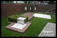 nowoczesny minimalistyczny ogród