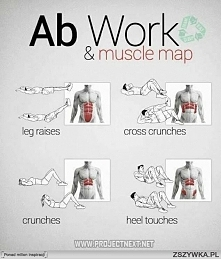 Ab Work & muscle map.