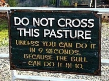 '_' ( nie przkraczaj tego ogrodzenia . No chyba że umiesz zrobić to...
