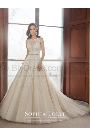 Price crash,Sophia Tolli Wedding Dresses Style Y21520 - Carson For Sale