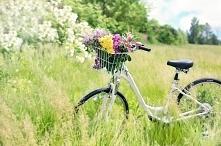 Długi weekend to czas w którym można sobie pozwolić na odpoczynek. A może lepiej jakby był on aktywny? Zobacz jakie zalety niesie za sobą jazda na rowerze, nie tylko fizyczne, a...