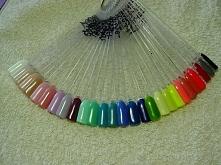 Hybrydy Paleta kolorów  :)