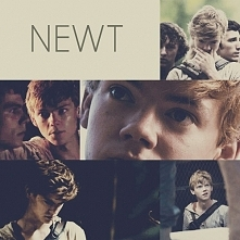 Newt   Subject A5  The Glue