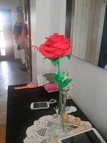 róża z krepiny