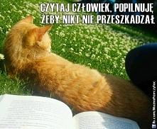 Koty takie (czasem) są, że pomagają w czytaniu ;-)