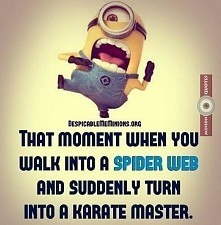 ten moment kiedy wlazłeś w pajęczynę i nagle zamieniasz się w mistrza karate :)
