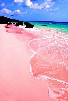 Isla Harbour, Bahamas - Pink Sands Beach