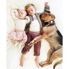 Kiedy ten pies położył się obok dzieci, mama zrobiła im zdjęcie. Nie spodziew...