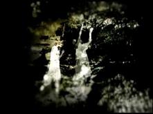 【MV】SCH-006 Light dance / A...