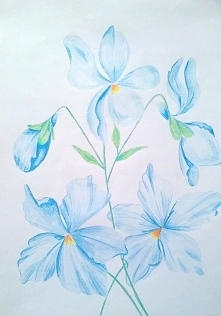 kwiaty (kredki)