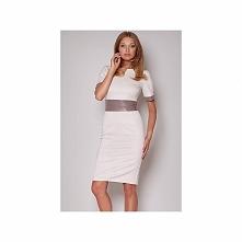 Sukienka biznesowa 204